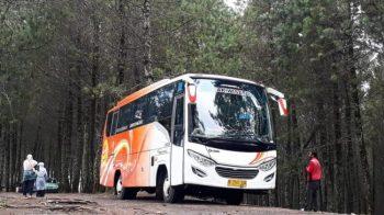 Hemat! Inilah Keuntungan Sewa Bus Dari Jakarta Ke Jogja